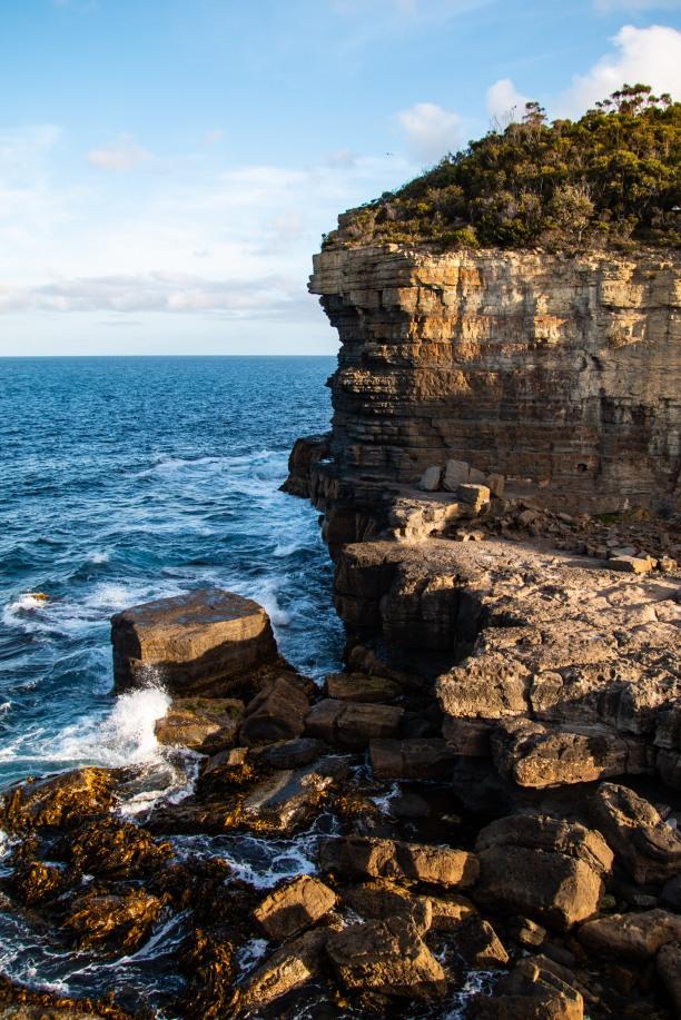 Tasmania64