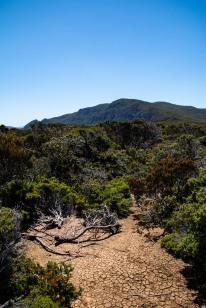 Tasmania84